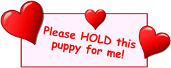 Hold Puppy for Me